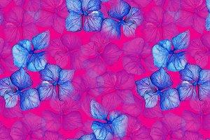 Hydrangea floral seamless pattern