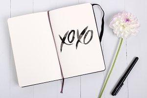 XOXO custom hand-lettering