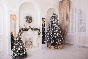 Winter New Year and Christmas decoration in classical hall.