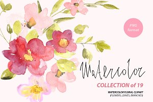Watercolor red & pink flowers png