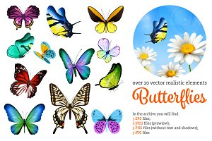 Realistic Butterflies Set