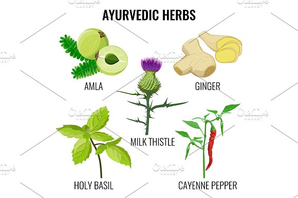 Holy basil, cayenne pepper, milk thistle, ginger root and amla