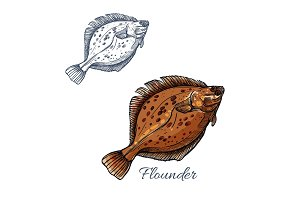 Flounder flatfish sketch for seafood design