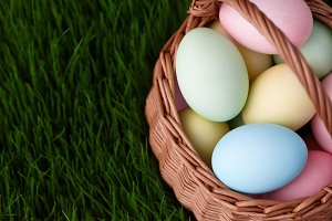 Easter eggs basket in grass meadow