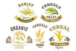 Cereal icon set with wheat, rye, oat and millet