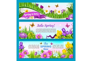 Spring flower greeting banner set design