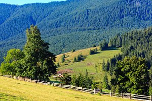 Summer Carpathian Mountains.