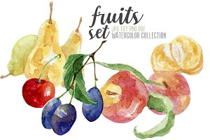 Watercolor fruits set hand painted