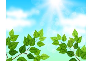 Background with sky and leaves
