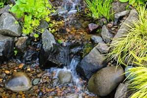 Bubbling water feature