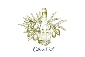Oil bottle with olive fruits sketch poster