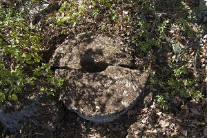 Broken millstone in a disused quarry