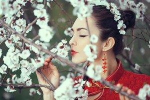 Geisha in red kimono in sakura