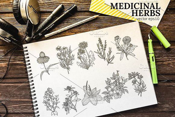 Medicinal Herbs Vintage Collection