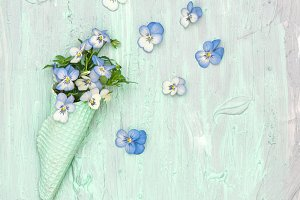 Pansy flowers in waffle cone