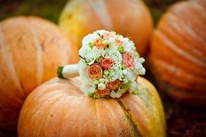 Bouquet lies on the big pumpkin