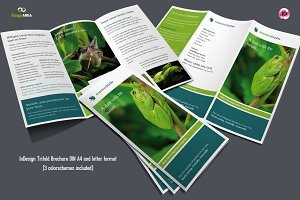 Flexible Trifold Brochure / 3 Colors