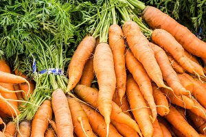 Fresh bunches of carrots