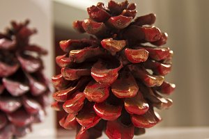 Painted pine cone.