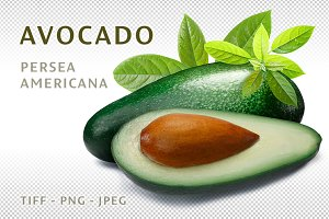 Avocado with leaves