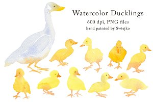 Country Clipart - Ducklings