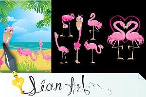 Flamingos cartoons