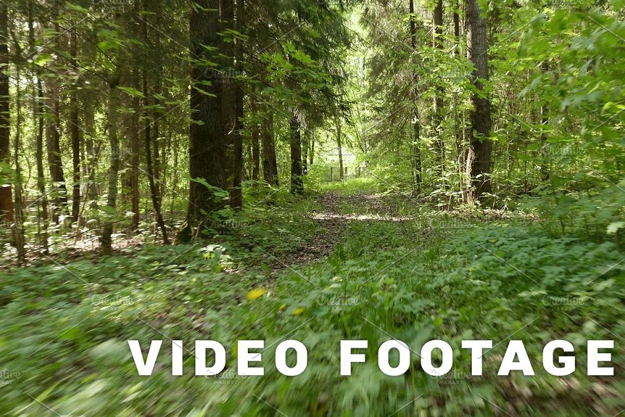 Flying in the forest. Smooth and fast steady cam shot. Clean and bright daytime