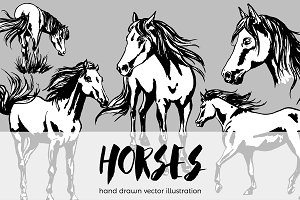 Painted horses collection