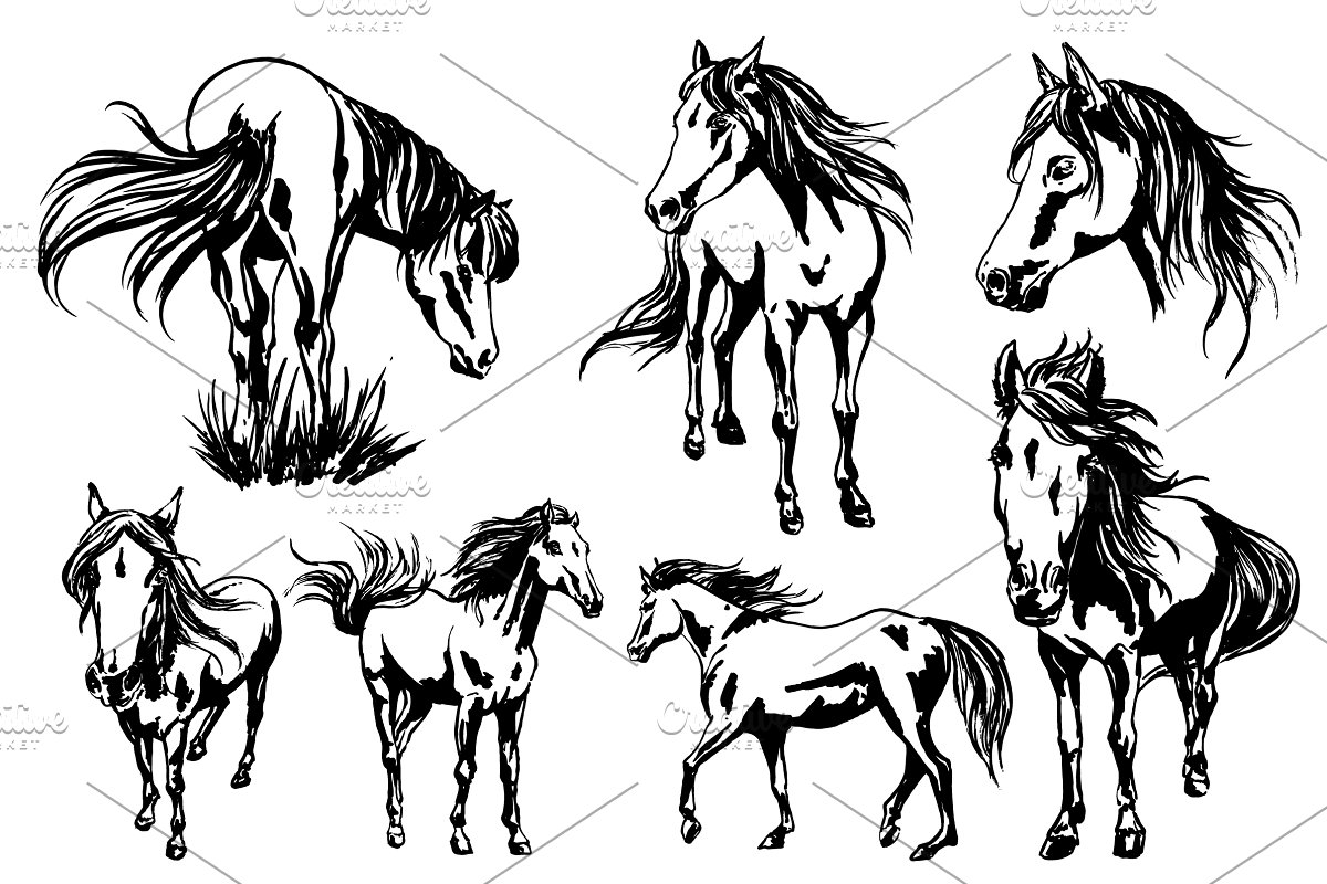 Painted horses collection in Illustrations - product preview 1