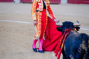 Torero and bull