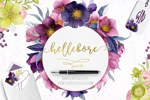 Hellebore Flowers Watercolor Set