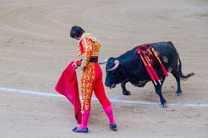 Spain. Bullfighter gives a pass