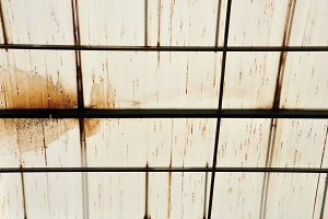 Stains Glasshouse Roof