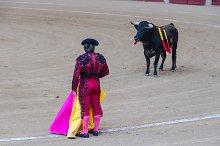 Spain. Bullfighter and bull