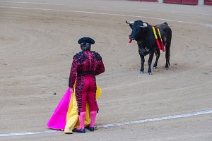 Spain. Bullfighter and bull