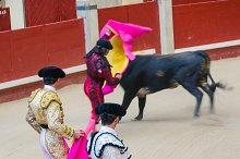 Two bullfighters