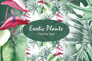 Exotic Plants  - Vector Set