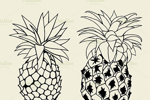 Vector Sketch Pineapple