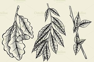 sketch spring branches