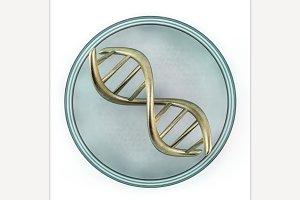 DNA. 3D rendering