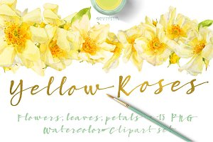 Yellow Roses -single species package