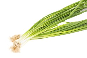 Green onions pen on the white background
