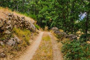 Rural road Avila