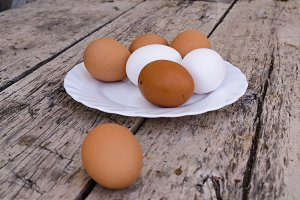 White and brown eggs plate