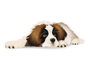 Cute puppy lying sad.
