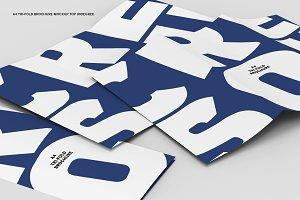 30˚ A4 Tri-fold Brochure (Scene)