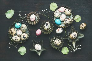 Colorful painted quail eggs