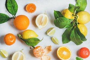 Variety of fresh citrus fruits