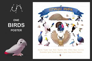 "♥ vector ""Birds of the World"" Rus"