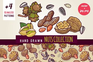 Hand drawn nuts and patterns pack.